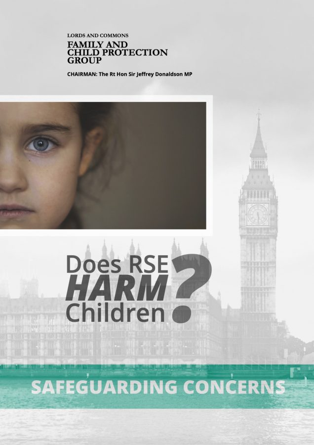 Lords and Commons Family and Child Protection Group document
